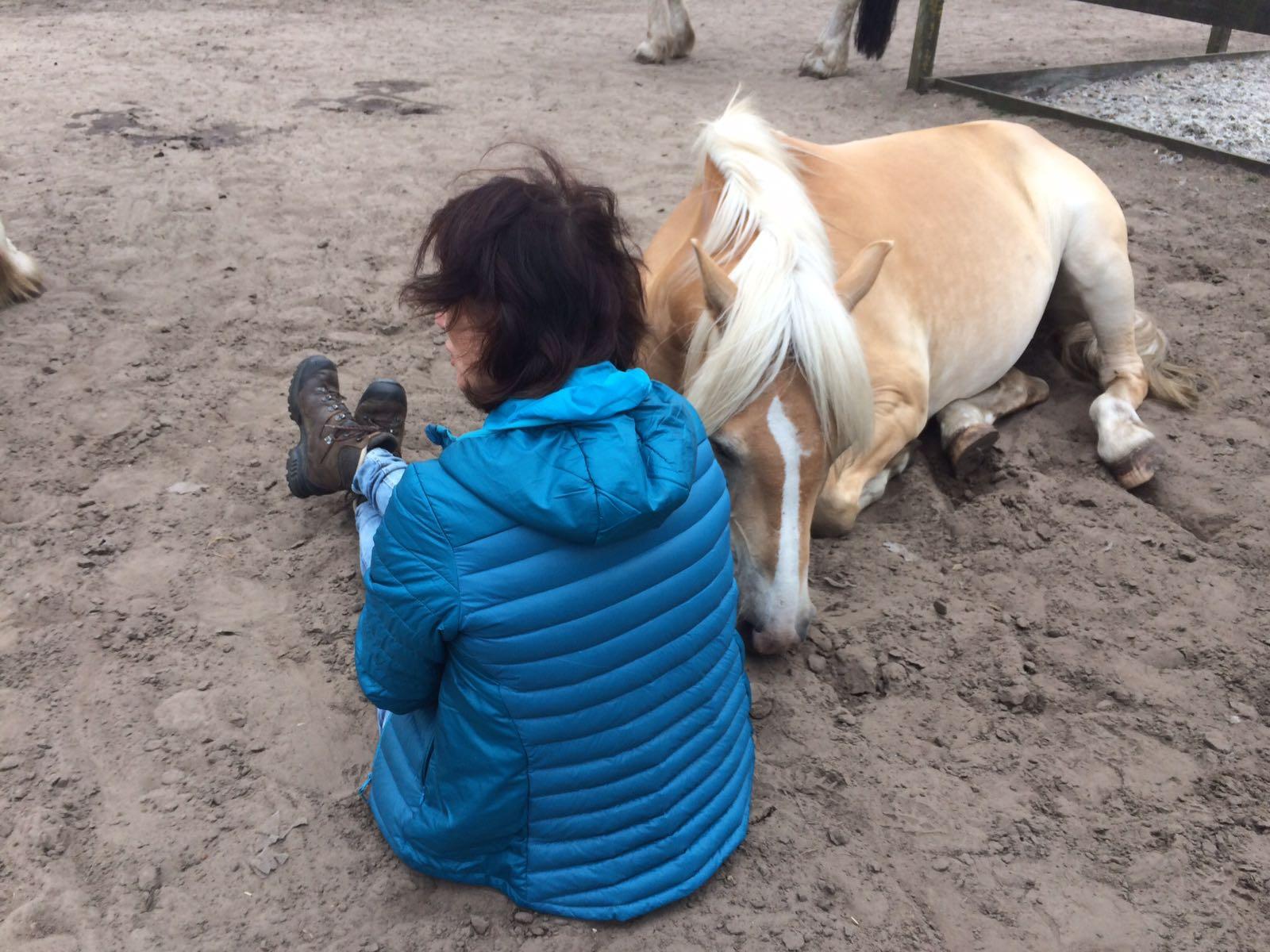 Burn Out Jaartract met paarden voorbeeld
